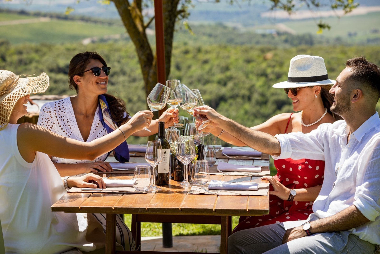 People toasting during the picnic on the vineyard